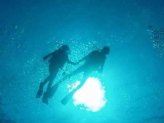 【海に潜りませんか?】1泊3食付体験ダイビングパック!!初めての人・泳げない人対象!!
