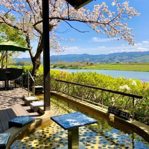 桜の季節の足湯テラス