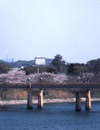 岡山城とホテル