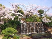 ホテルの滝