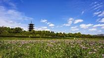 備中国分寺。県内唯一の五重塔。四季折々の花々が周辺に咲く人気のフォトスポット。