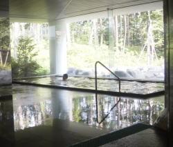 露天風呂付き温泉施設天女の湯