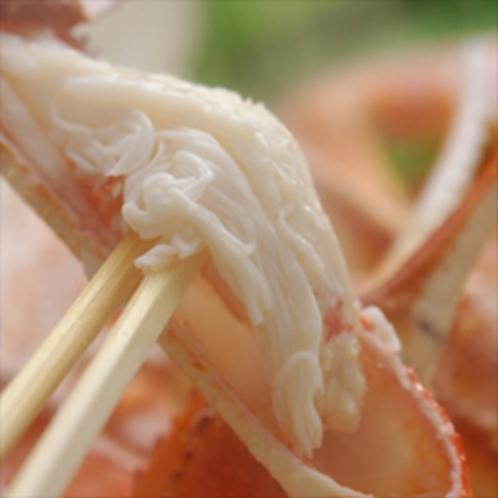 蟹身アップ