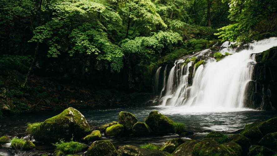 蓼科大滝~高さ25メートル、幅10メートルの豪快な滝