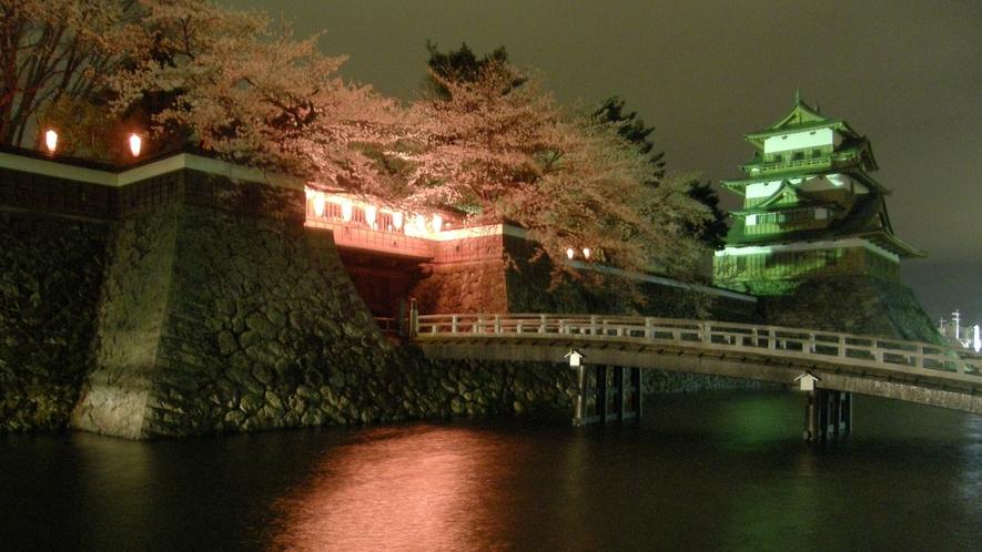 高島城 夜桜のライトアップ