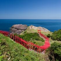 元乃隅稲荷神社:参拝していただきたい神社。海と123基の赤い鳥居が印象的です。当館より車で42分。