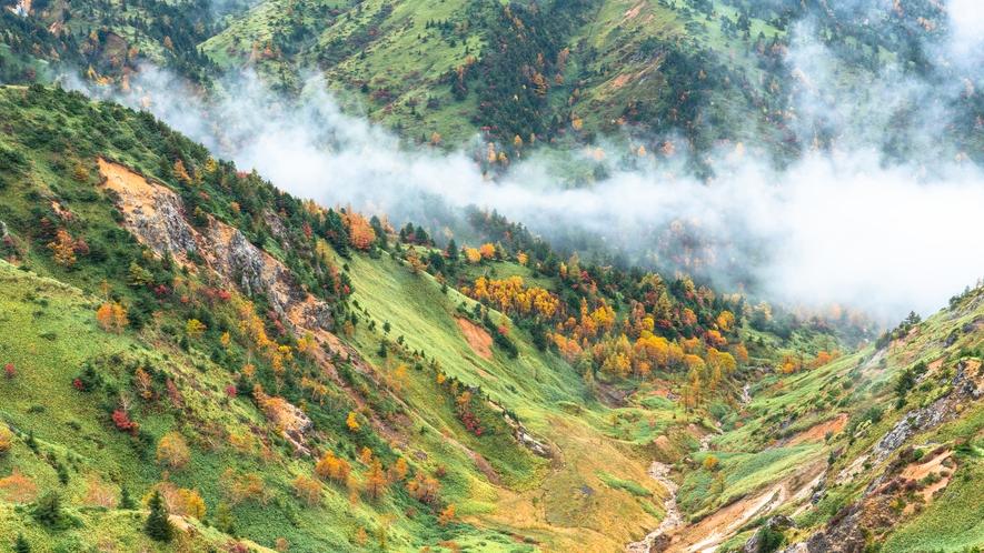 秋の志賀高原 春夏秋はハイキングや登山におすすめです