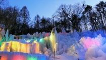 秋神温泉氷点下の森