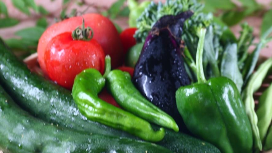 ★採れたての新鮮野菜