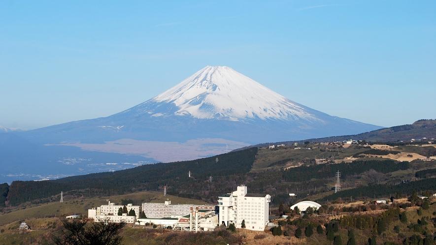 ■*世界遺産「富士山」が見下ろす富士箱根ランド スコーレプラザホテル