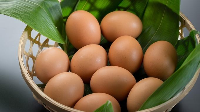 ソーシャルディスタンスに配慮【那須御養卵&とちぎ和牛すき焼き&岩魚(鮎)の塩焼き会席】にごり湯満喫