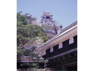 高知城です☆当館より徒歩10分♪