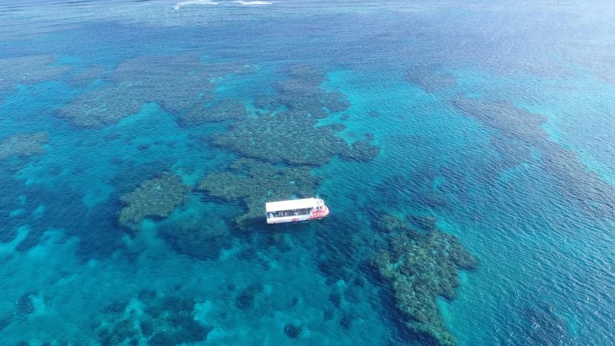 【神秘の楽園】水中観光船で海中散歩♪「シースカイ」チケット付♪
