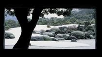 連続日本一の庭園足立美実館まで30分