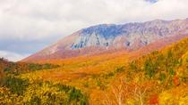 紅葉の大山まで30分
