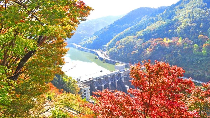 【周辺】鹿野川湖:春には3000本の桜、秋には色とりどりの紅葉が楽しめます。