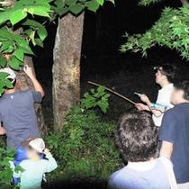 夏の探検隊の様子(夏休み期間)本物の自然を体験して下さいね