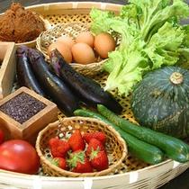 新鮮な野菜とイチゴ