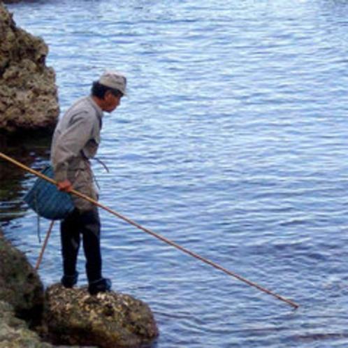 タコすかし漁