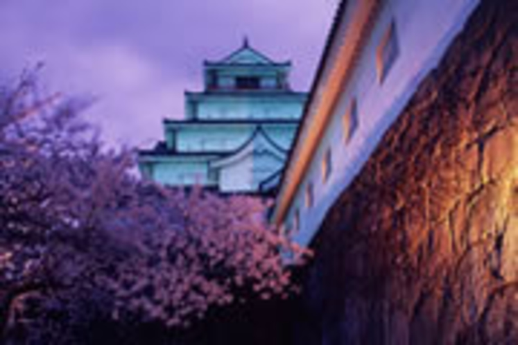 鶴ヶ城またの名を会津城 (当館より車で5分)