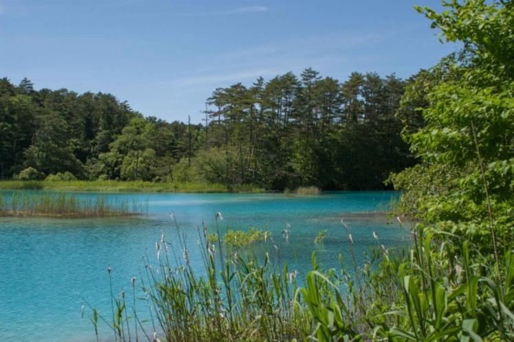 【裏磐梯 五色沼】磐梯山から流れ落ちる水によって美しい色に。紅葉や避暑地に。(当館より車で約1時間)