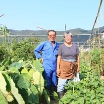 新鮮な野菜は、弥生農園さんから毎日仕入れています。