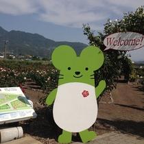 さかき千曲川バラ公園までは車で約20分です。