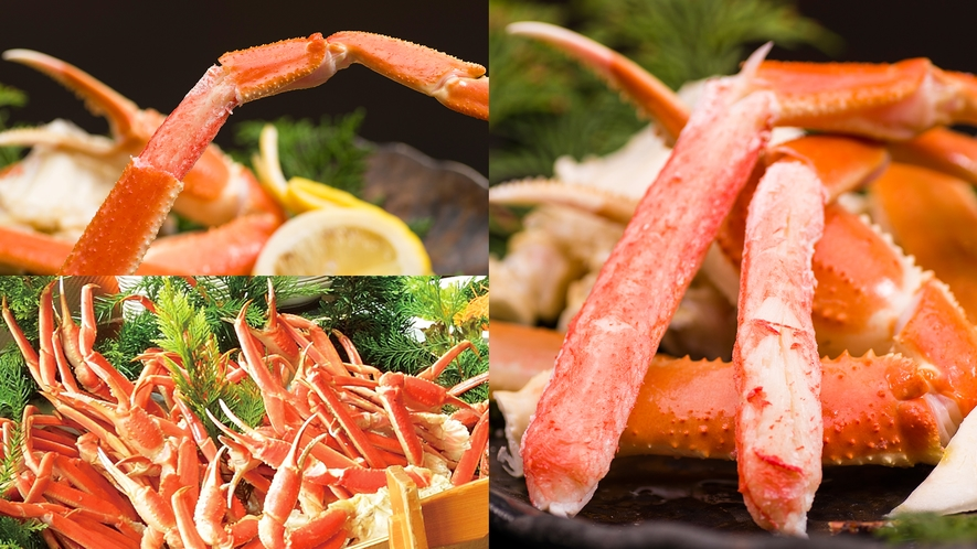 【食事】バイキング蟹食べ放題付 本ずわい蟹