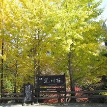 秋の黒川荘外観