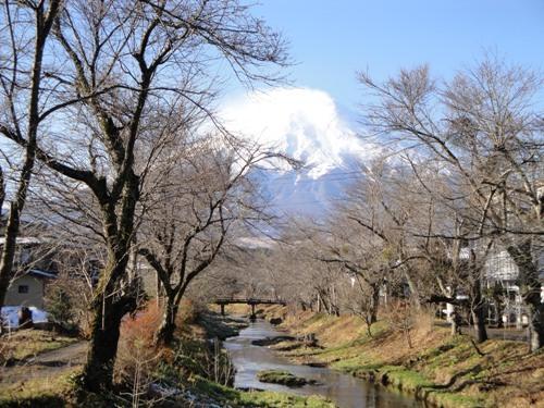 富士山と桂川と桜並木
