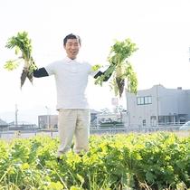 【自社農園】皆様に安心・安全なお野菜をご提供♪
