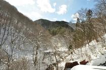 和室10畳から見る雪景色