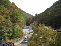 お部屋から見る秋の景色