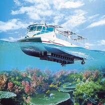 *周辺観光:海域公園(乗船場は当館の目の前!キレイな海をお楽しみ下さい)