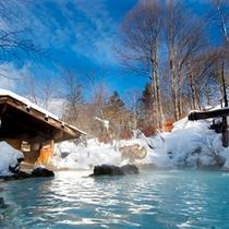 ◇貴重な冬の晴れ間