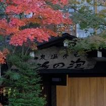 ◇秋の泡の湯玄関