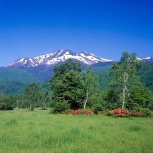 ◇初夏の乗鞍高原から乗鞍岳