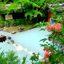 ◇初夏・花咲く野天風呂
