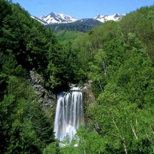 ◇新緑の善五郎の滝