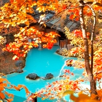 ◇対比が美しい!見事な紅葉と青白い野天風呂の湯