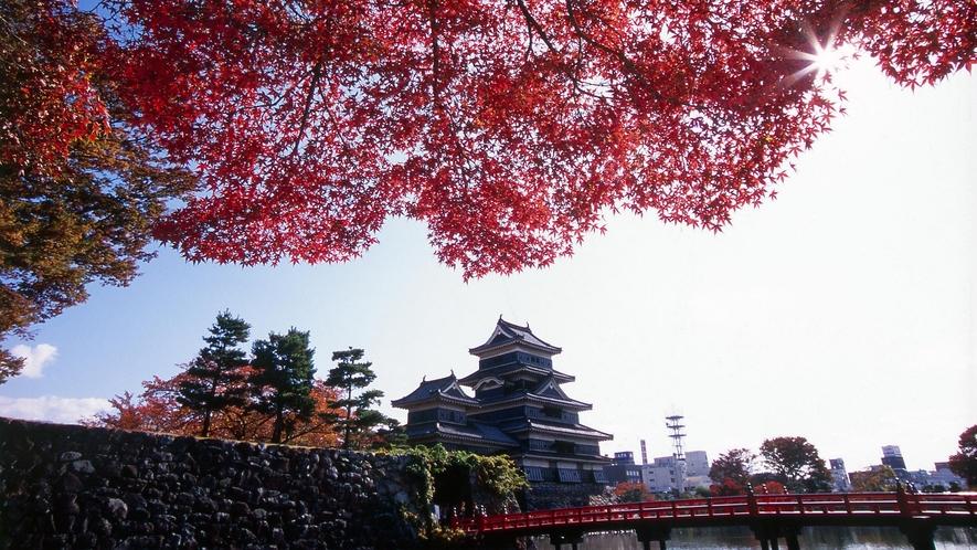 ・秋の松本城