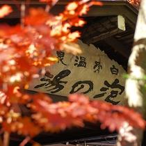 ■秋・紅葉と看板