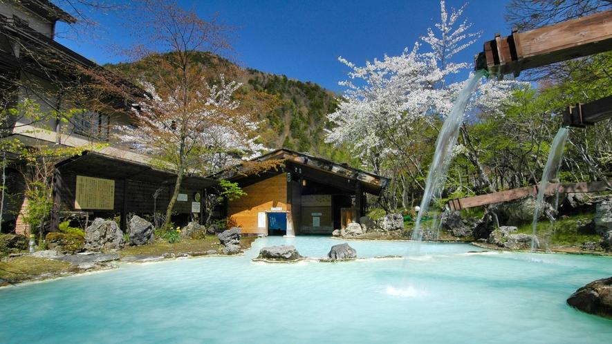 ・【春】山桜と快晴の野天風呂