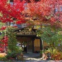 ■秋・真っ赤に色づいた紅葉で華やかにお出迎え