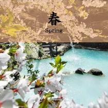 【春】山桜を愛でながら