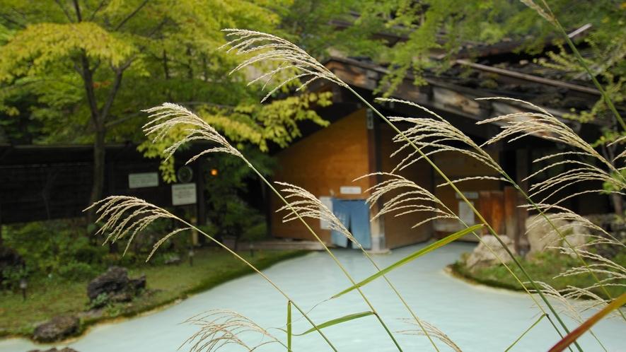 ・【秋】初秋・すすきゆらめく野天風呂