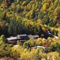 ■秋・静穏の谷に佇む温泉宿