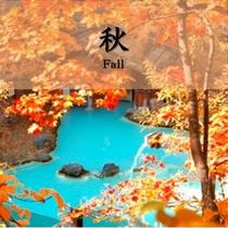 【秋】対比が美しい!見事な紅葉と青白い野天風呂の湯