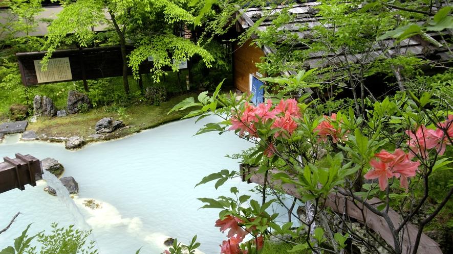 ・【夏】初夏花咲く野天風呂