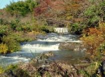 秋 紅葉と溶岩流